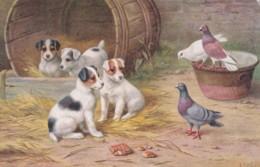 AP19 Artist Signed E. Hunt - Dogs And Pigeons - Other Illustrators
