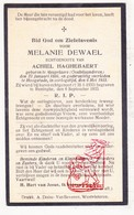 DP Oorlogsslachtoffer WOI 14-18 M. De Wael ° Mespelare Dendermonde † Hoogstade Alveringem X Haghebaert / Lo Reninge 1933 - Images Religieuses
