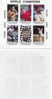 Tuva 1996; Chess Graf Tyson Faldo Lara Agassi S/s Perforation ERROR (you Bid On Visible Bloc, Other Is Reference) - Tuva