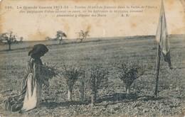 CPA - Thèmes - Militaria - Guerre 1914-18 - La Grande Guerre 1914-15 - Tombes De Soldats Français - Guerre 1914-18