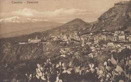Plantes - Cactus Raquettes Figuiers Barbarie - Italie - Taormina - Panorama - Cactus