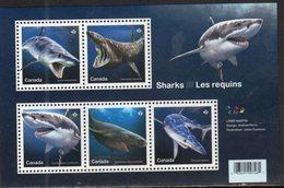 CANADA, 2018, MNH, MARINE LIFE, SHARKS, WHITE SHARKS, BASKING SHARK, GREENLAND SHARK, SHEETLET - Fishes