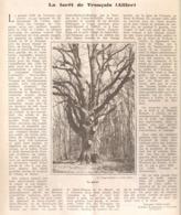 LA FORET De TRONCAIS  ( ALLIER )  1930 - Auvergne