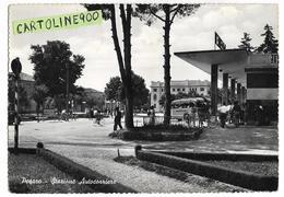 Marche-pesaro Stazione Auto Corriere Veduta Piazza Giardino Auto Corriera In Sosta Persone Anni 50 - Pesaro