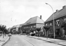 Zelzate   Hospice En Moederhuis    I 4258 - Zelzate