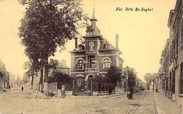 Halle Hal  Villa De Voghel Vogel   I 4304 - Halle