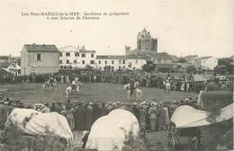 "CPA FRANCE 13 "" Saintes Maries De La Mer, Course De Chevaux "" - Saintes Maries De La Mer"