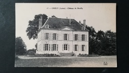 45 - CHECY - CHATEAU DE REUILLY - France