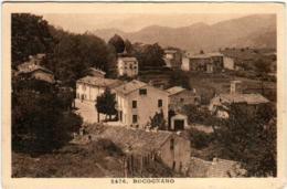 31rg 513 CPA - BOCOGNANO - France