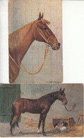 D1441 Lot 2 Old Postcards Artist Signed Horses Chevals - Chevaux