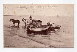 - CPA CAYEUX-SUR-MER (80) - Le Débarquement Du Poisson 1933 - Edition Galeries Cayolaises N° 49 - - Cayeux Sur Mer