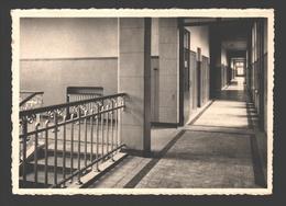 Ronse - Provinciaal Sanatorium Hynsdaele - Gang Met Kassen - Renaix - Ronse