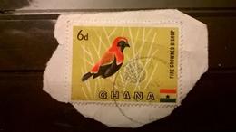 FRANCOBOLLI STAMPS GHANA 1959 SIMBOLI NAZIONALI SU FRAMMENTO FRANGMENT - Ghana (1957-...)