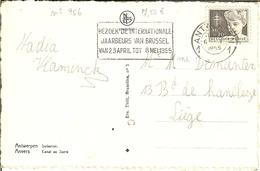 """CP De ANTWERPEN / ANVERS """" Suikerrui / Canal Au Sucre """" Avec Nr 956 En 1955 - Belgio"""