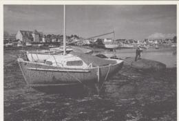 """Evènements - Catastrophe - Ecologie - Au Large De L'Ile De Batz 29 - Naufrage Marée Noire Pétrolier  """"Tanio"""" - Mars 1980 - Catástrofes"""