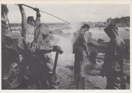 """Evènements - Catastrophe - Ecologie - Au Large De L'Ile De Batz 29 - Naufrage Marée Noire Pétrolier  """"Tanio"""" - Mars 1980 - Catastrophes"""