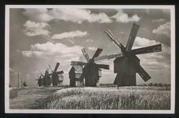 *Moulins à Vent En Bessarable* Nueva. - Rumania