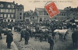H182 - 14 - LISIEUX - Calvados - Place De La République - Le Marché Aux Chevaux - Lisieux