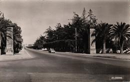 MAROC - RABAT - L'AVENUE DE LA VICTOIRE - Rabat