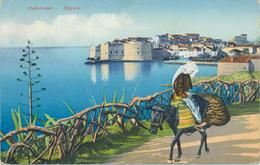 Croatia Dubrovnik, Ragusa 1918 / Panorama  / Woman On Donkey / Purger 10628/ KuK  Zensure - Croatie