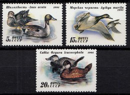 Russia - Soviet Union 1991 Mi.6210-12 Enten Vögel ** MNH Set   (83018 - Vögel
