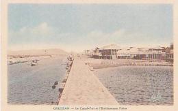 Aude        451        GRUISSAN.Le Canal Port Et L'établissement Fabre - Autres Communes