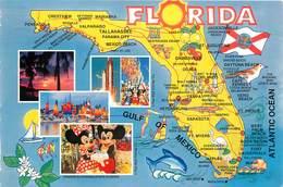 CPSM Florida                                     L2688 - Etats-Unis