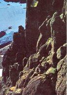 Iceland/Islande/Ijsland/Island Postcard Mountain Rock At Borgarfjörður Eystri Unused - Iceland