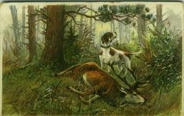 HUNTING - M.&L. 1910s POSTCARD - DOG /  DEER (BG1036) - Hunting