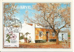 Postal Máximo Flor De Amendoeira Faro Algarve Portugal Personalizado Almond Blossom Almendro Maxicard Maximum - Bäume