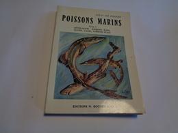 Poissons Marins Tome 1  (requins-raies-clupes-gades-Poissons Plats) Edit.Boubée 1959 - Nature