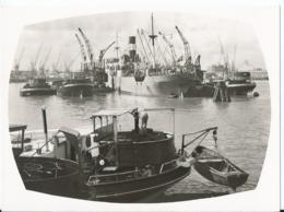 Rotterdam Wereldhaven - Maashaven - No 2518 - Rotterdam
