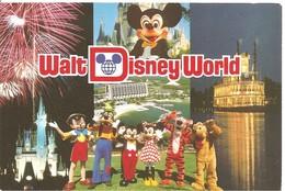 WALT DISNEY WORLD - Disneyworld