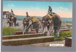 BURMA/ MYANMAR Elephants At Work Ca 1910 OLD POSTCARD 2 Scans - Myanmar (Burma)