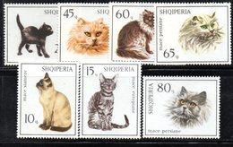 310 - 490 - ALBANIA 1966 ,    Yvert N. 915/921 Usati  Gatti Cats - Albania
