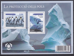 Andorre Andorra 2009 Protection Of Polar Areas And Glaciers (Yv BF 2 ) MNH** Luxe - Preserve The Polar Regions And Glaciers