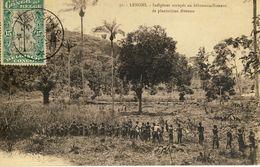 CONGO BELGE -- LENGHI -- Indigènes Occupés Au Débroussaillement De Plantations Diverses - Congo - Kinshasa (ex Zaire)