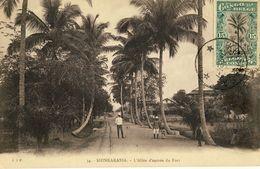 CONGO BELGE -- SHINKAKASSA -- L'Allée D'entrée Du Fort - Congo - Kinshasa (ex Zaire)