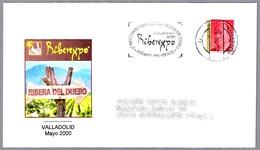 Muestra VINOS D.O. RIBERA DEL DUERO - Vino - Wine. Valladolid 2000 - Vinos Y Alcoholes