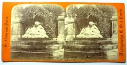 FONTAINE DE MEDICIS AU LUXEMBOURG - PARIS - Stereoscopic