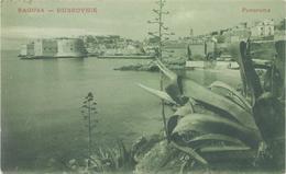 Croatia Dubrovnik, Ragusa 1910 / Panorama , Agave - Croatie