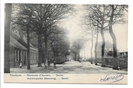 Turnhout - Antwerpsche Steenweg - Dreef. - Turnhout