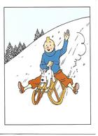 Carte Double Tintin Et Milou. Carte De Noël. Glissade Avec Luge. - France