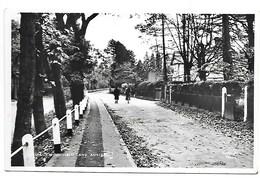 REAL PHOTO POSTCARD - ASHTEAD - - WOODFIELD LANE (STREET SCENE) ----- B359 - Surrey