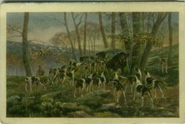 HUNTING - DOG & BOAR - EDIT BRUNNER & CO. 1910s  (BG1044) - Hunting