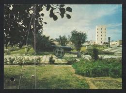 United Arab Emirates Sharjah  Main Garden Picture Postcard U A E View Card  CONDITION AS PER SCAN - Dubai