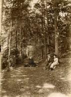 France Hucqueliers Promenade Dans Le Bois Foret Ancienne Photo 1900 - Photographs