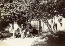 France Villers Un Dimanche à La Campagne Assis A L'Ombre Ancienne Photo 1900 - Photographs