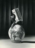 France Publicité Pour Photo Gevaert Panchromosa Ancienne Photo 1930 - Photographs