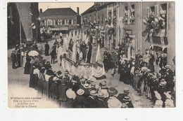 SAINT HILAIRE DES LANDES - FETE DE JEANNE D'ARC - 30 JUILLET 1911 - CHAR DE LA FRANCE - 53 - France